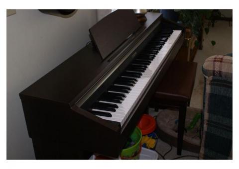 Cassio Celviano Piano