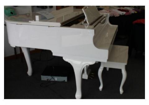 Baby grand piano young chang player piano